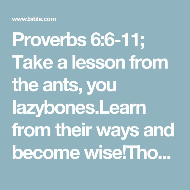 Proverbs 6:6-11; Take a lesson from the ants, you lazybones.Learn from their ways and become wise!Though they have no princeor governor or ruler to make them work,they labor hard all summer,gathering food for the winter.But you, lazybones, how long will you sleep?When will you wake up?A little extra sleep, a little more slumber,a little folding of the hands to rest—then poverty will pounce on you like a bandit;scarcity will attack you like an armed robber.