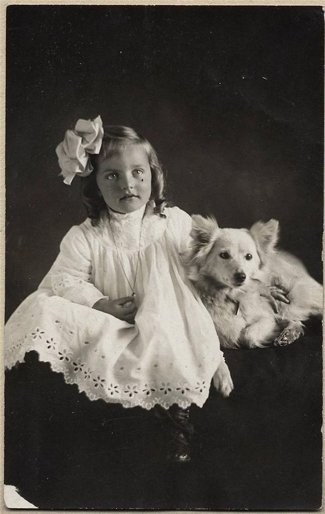 rppc cute young girl with beautiful eyes & little white dog, vintage photo