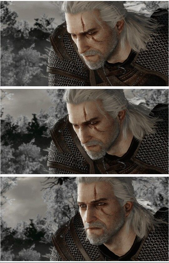 Geralt of Rivia, The White Wolf