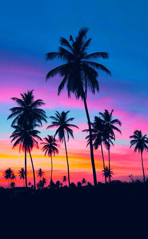 #jemevade #ledeclicanticlope / Ciel merveilleux, palmiers, plage .... Hawai.