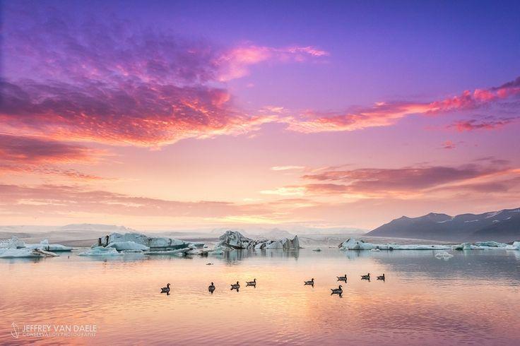 Barnacle Gees on Jokulsarlon Glacier Lagoon by Jeffrey Van Daele on 500px