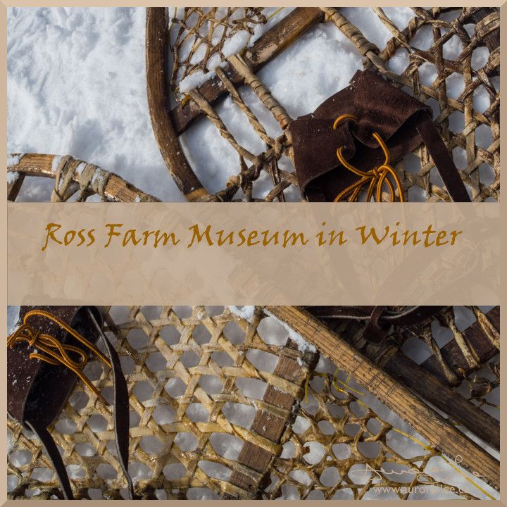 Photos and a round up from my recent visit to Ross Farm Museum in winter. Snowshoes, sleigh rides and biscuits and jam.