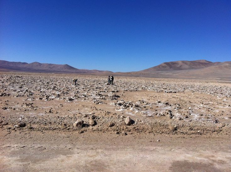 New Study of Earth's Driest Desert May Have Implications for Life on Mars