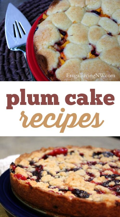 Plum Cake Recipes: 2 delicious and simple ways to use fresh plums!