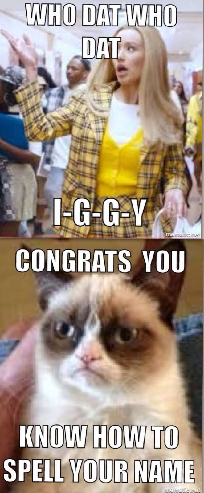 A little funny celebrity humor. Starring Iggy and Grumpy Cat. Pop culture at its finest, don't you agree?                                                                                                                                                                                 More