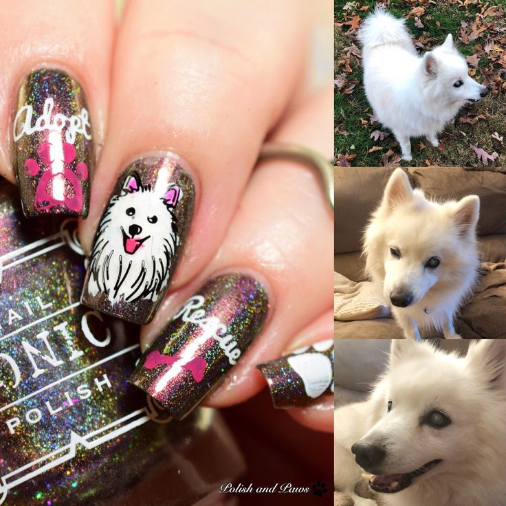Zero The Dog Nail Designs: Best 25+ Dog Nail Art Ideas On Pinterest
