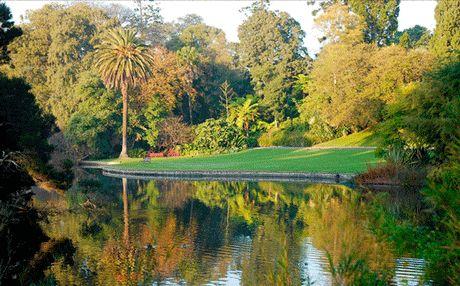 Melbourne's Botanic Gardens