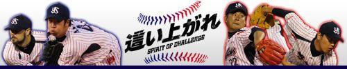年間シート | 東京ヤクルトスワローズ公式サイト