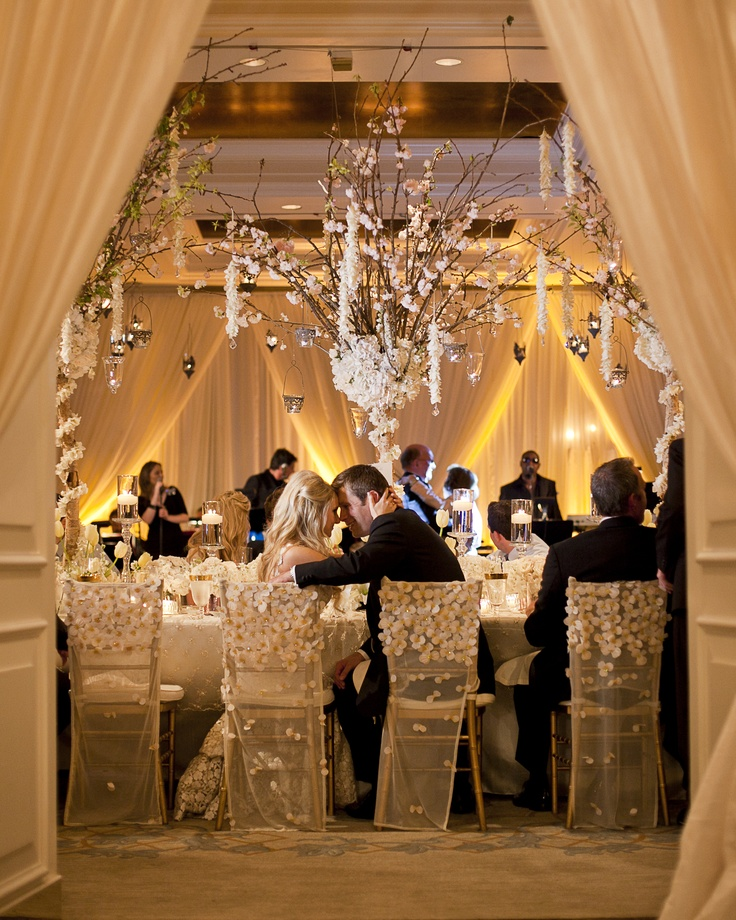 champagne decorations wedding 17 best images about champagne wedding lighting on 2543