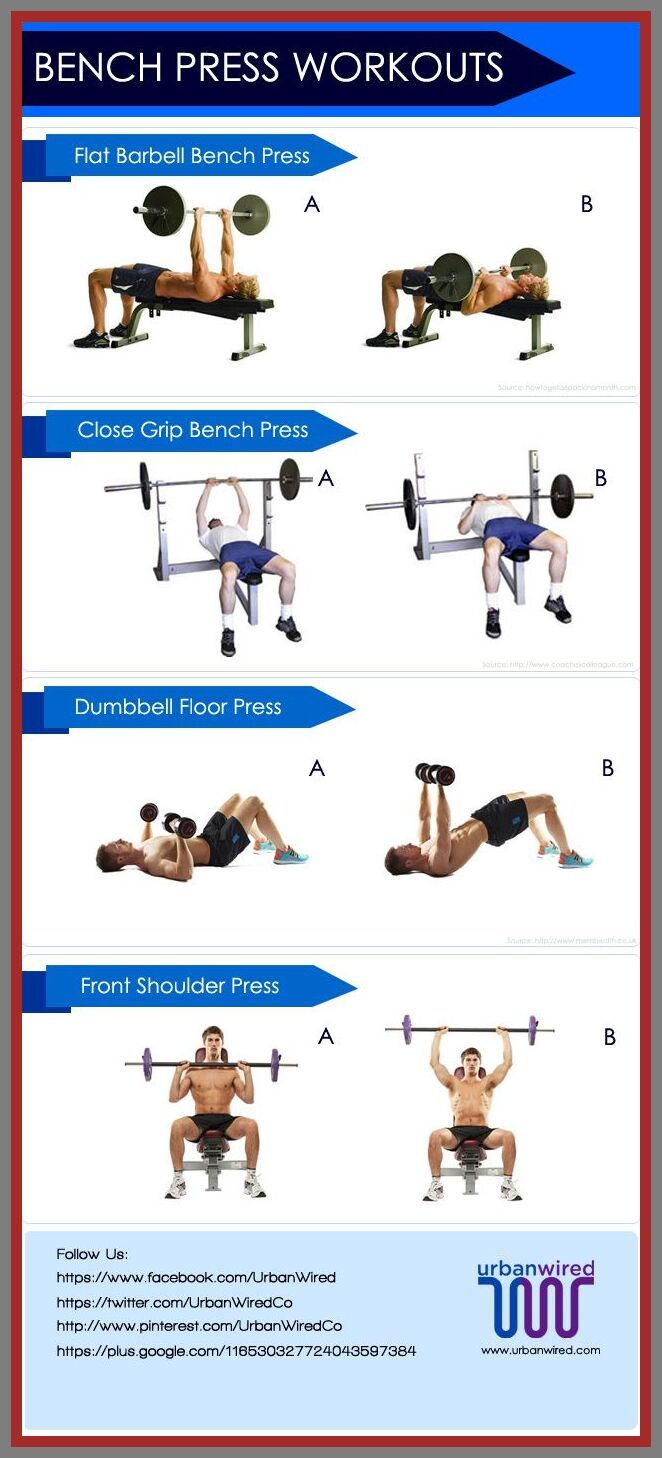 103 Reference Of Bench Press Workout To Build Muscle In 2020 Bench Press Workout Bench Workout Bench Press