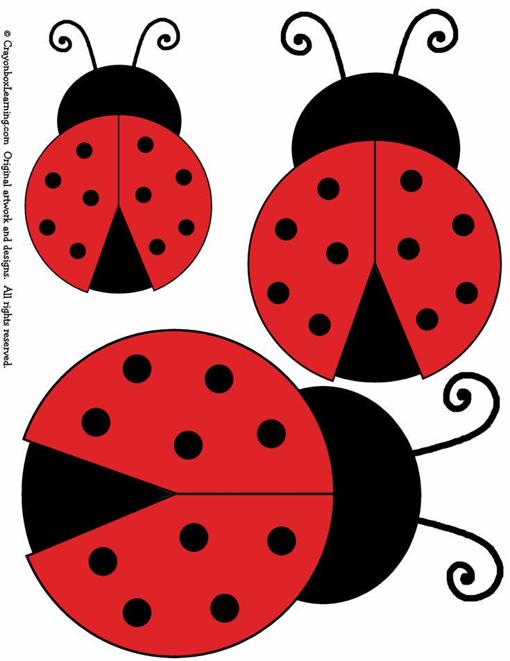 Ladybird templates in three sizes  - sure to find a use for these..