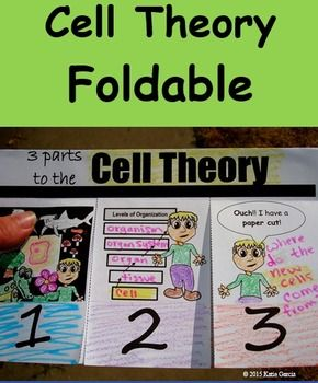 "This is a great foldable on the cell theory. It lists the three parts of the cell theory and gives some kind of visual image to help students make connections to the 3 parts of the cell theory. # 1 - ""All living things are made up of cells."" The foldable shows a bunch of different living things and in the middle there is a blank spot."