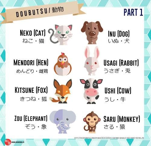 #learn #Japanese #Animals