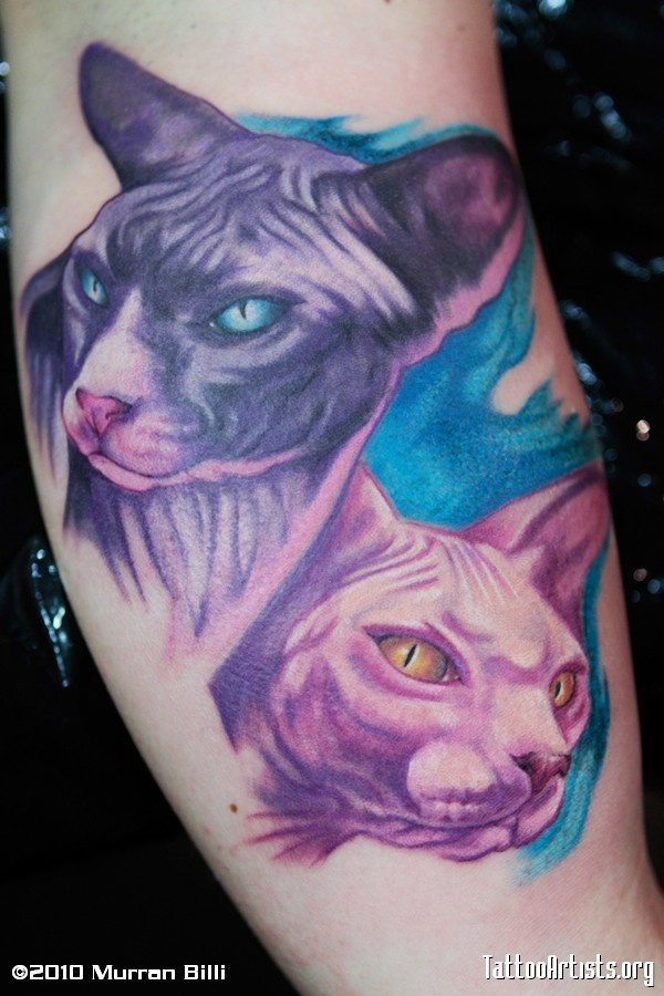 17 best images about tattoos on pinterest animal tattoos for Cat asshole tattoo