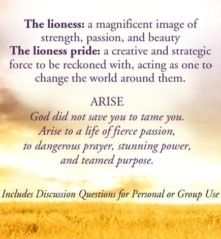Mary's World: Lioness Arising by Lisa Bevere
