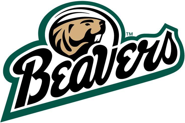 Bemidji State Beavers Hockey Google Search Hockey