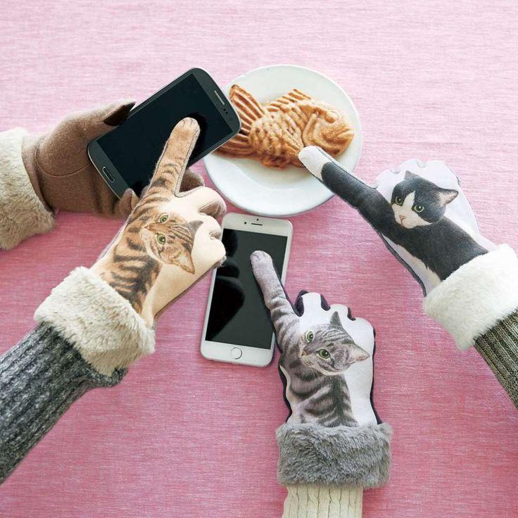 冬のスマートフォン操作は、猫の手も借りたい。 スマホ画面に向...