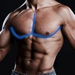 One Of The Most Powerful Chest Exercises For Men | Chest Sculpting: Discover How To Lose Chest Fat And Lose Man Boobs, While Also Burning Body Fat, Growing Muscle, And Sculpting An Unstoppable, Masculine Chest And Overall Physique #benchpressweighttraining