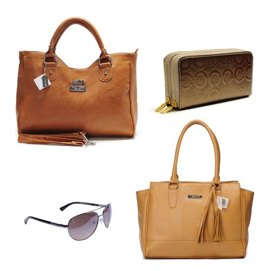 Coach Shades of Brown EEZ Satchel, Tote, Wallet, and Sunglasses ($930)