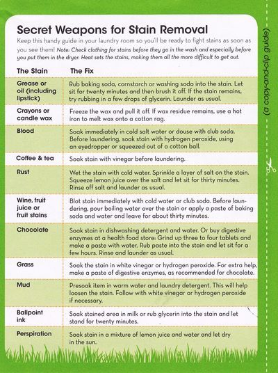 Secret Weapons for Stain Removal - from Practically Green: Your Guide to EcoFriendly Decision-Making