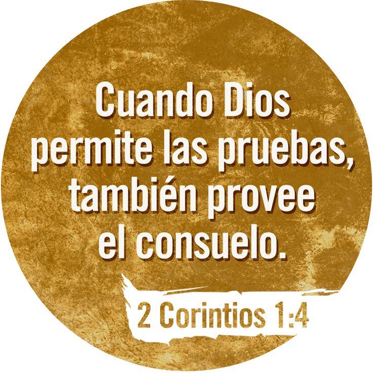 Cuando tenemos dificultades, o cuando sufrimos, Dios nos ayuda para que podamos ayudar a los que sufren o tienen problemas. 2 Corintios 1:4 TLA #Versiculos - #Bible - #Dios