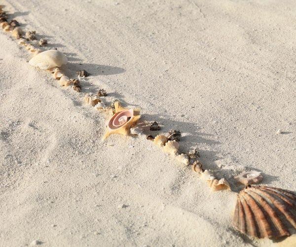 Seashells line the aisle for a beach wedding | Metallic Sands Collection at Palace Resorts #destinationwedding