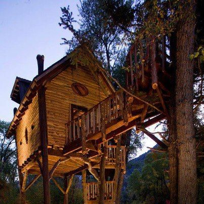 your basic treehouse via fb a little taste of country living