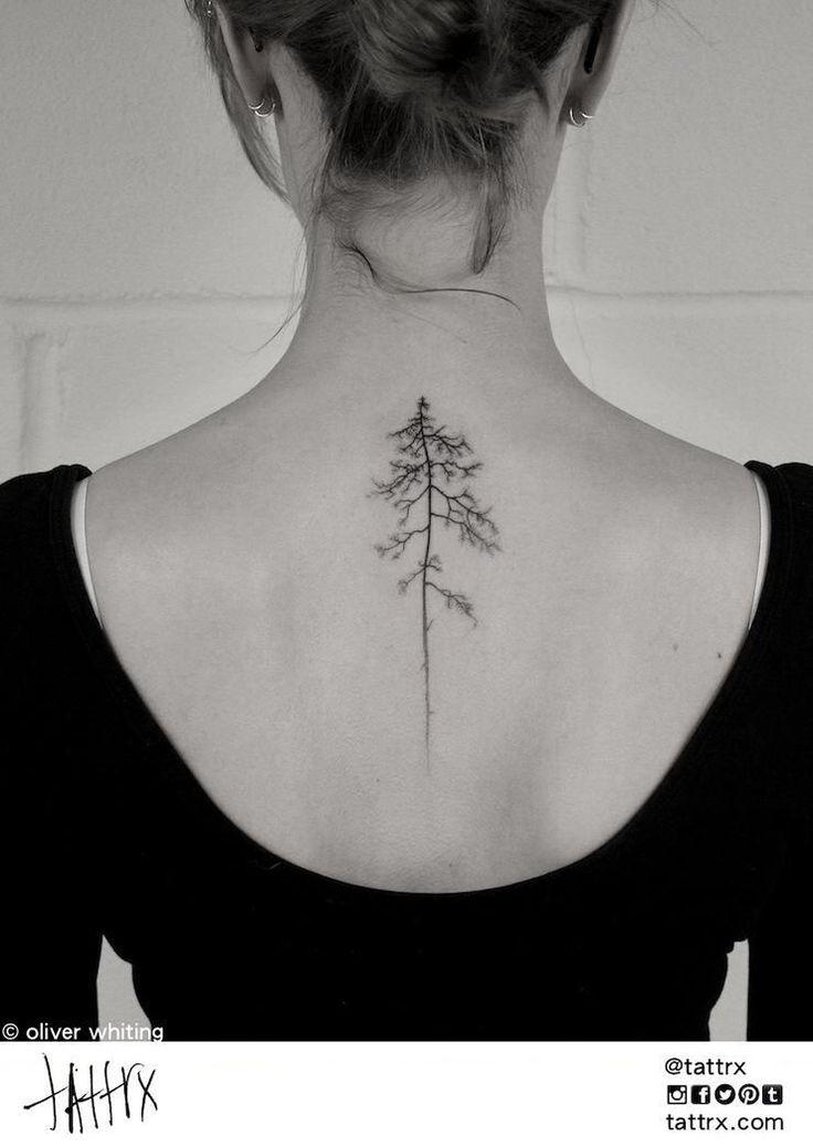 Pine tattoo                                                                                                                                                                                 More