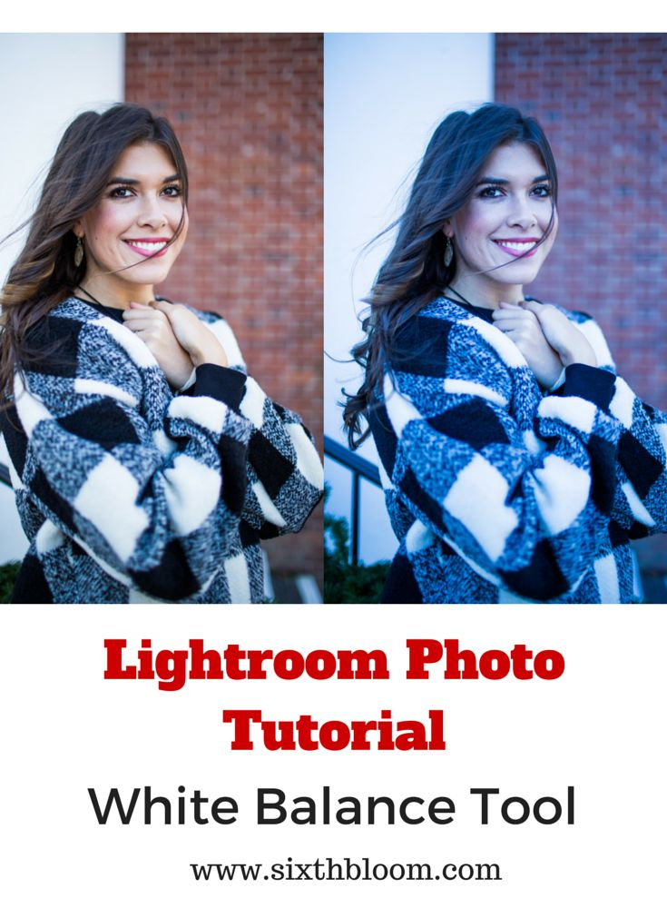 Lightroom Photo Tutorial White Balance, Photography Tips, Photography Tutorials…