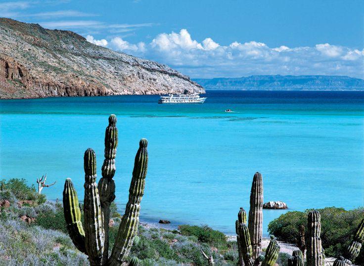 Plages de Basse-Californie: découvrez les meilleures plages de Basse-Californie au Mexique.