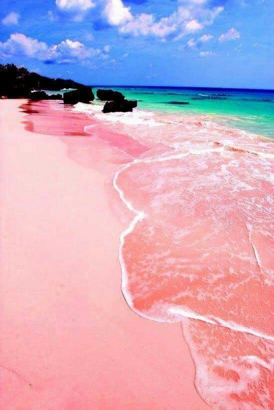 Pink beach , Indonesia