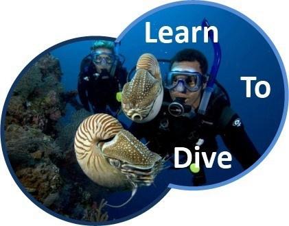 Learn to Scuba Dive Melbourne