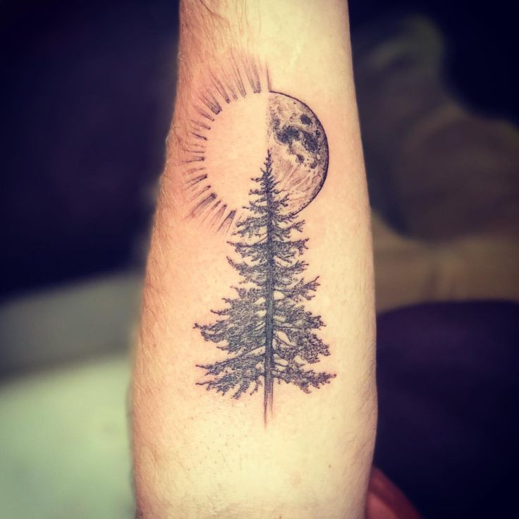 Simple and Easy Pine Tree Tattoo – Designs & Meanings (2019) – Page 21 of 60