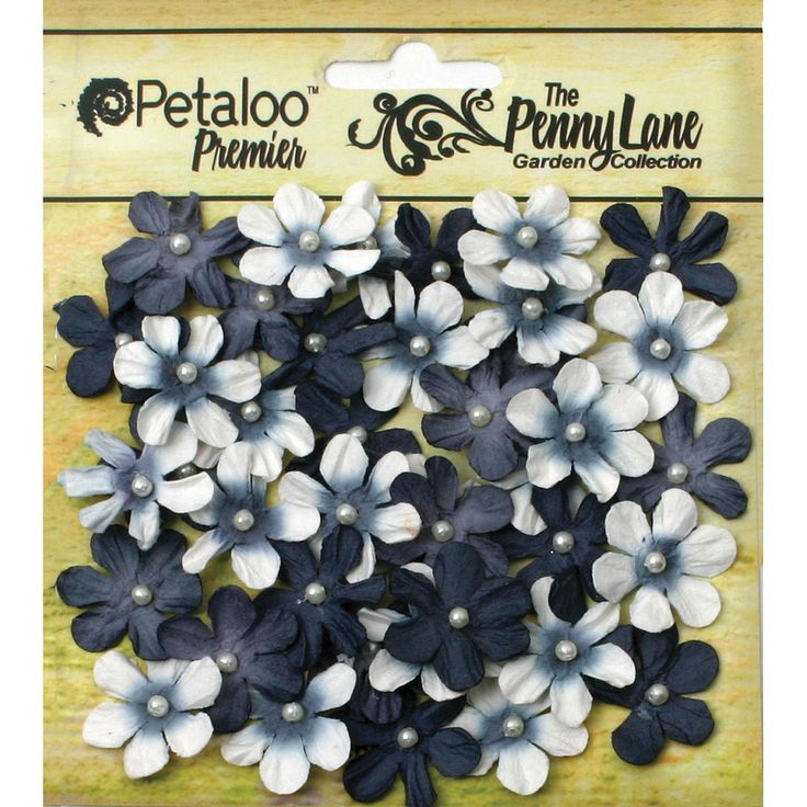 Petaloo Penny Lane Mini Pearl Daisies .75in 40/Pkg