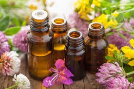 5 ESSENTIAL OILS YOU NEED TO KNOW & USE