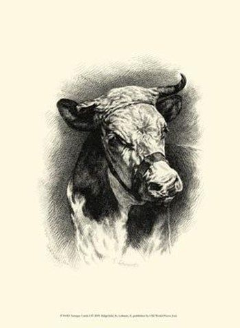 1000 Images About Vintage Farm Animal Prints On Pinterest