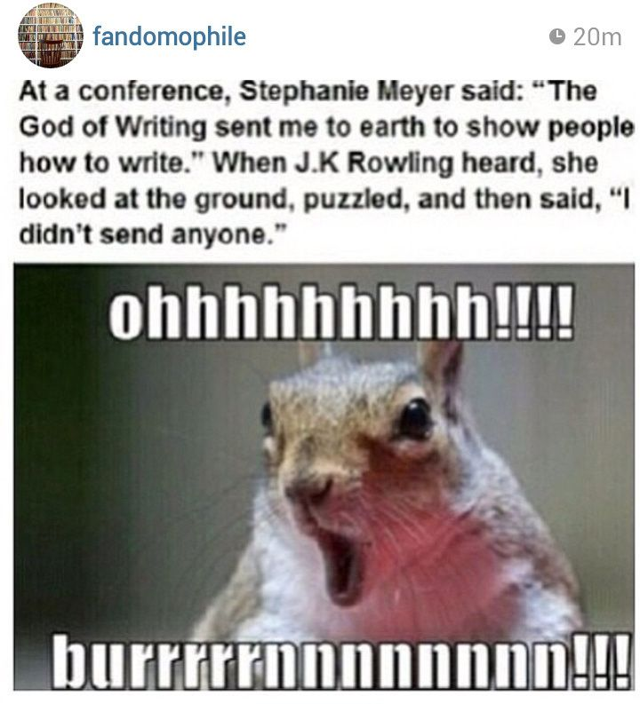 Twilight vs. Harry Potter hahahahaha well I pray Stephany meyer isn't the one who will influence everyone how to write books because I might just have o stop reading then and that means id die. but how conceded can you get? thank you Rowling for putting her in her place