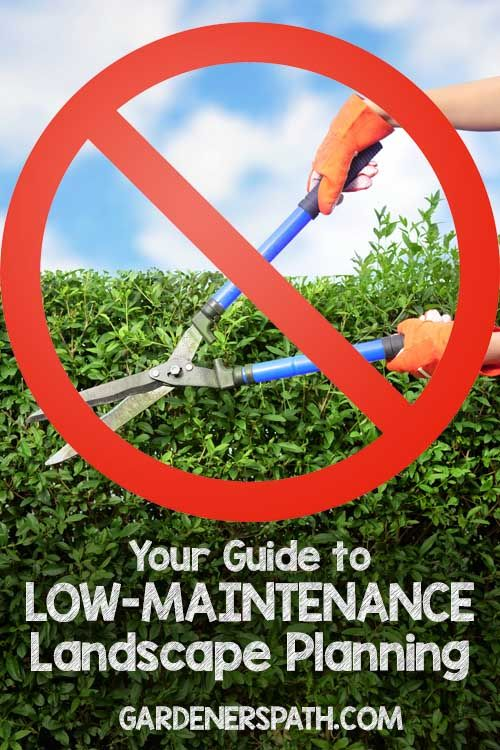 Your Guide to Low-Maintenance Landscaping Planning   Gardenerspath.com