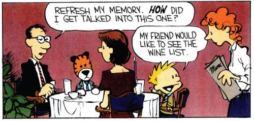 Calvin and Hobbes I ABSOLUTELY LoOvVeE THIS COMIC C&H TO SPACE AND BACK