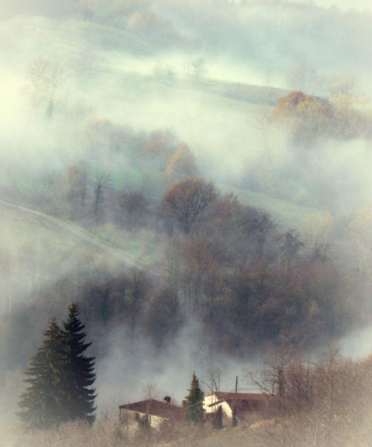 Magiche Langhe nella nebbia. Piemonte, Italia Foto di Germana Devalle.
