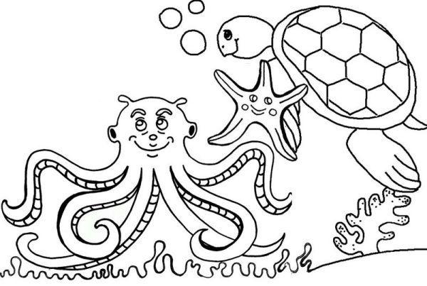 Octopus Coloring Page Preschool