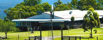 Image result for tobruk sheep station