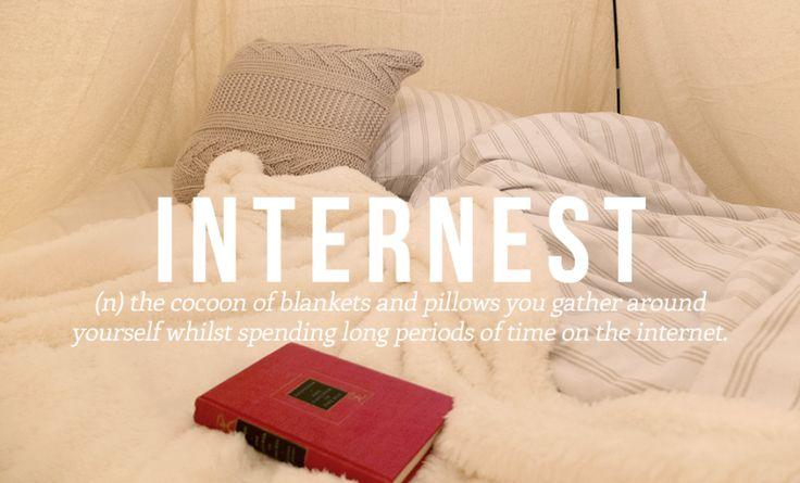 Internest (n) the cocoon of blankets and pillows you gather around yourself whilst spending long periods of time on the internet (otherwise known as Caturday).