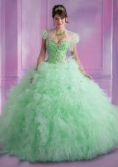 Wholesale new apple green sweet 15 Dress Style 89008 Ruffled Tulle Quinceanera Gown with Beading http://www.topdesignbridal.net/wholesale-new-apple-green-sweet-15-dress-style-89008-ruffled-tulle-quinceanera-gown-with-beading_p4093.html