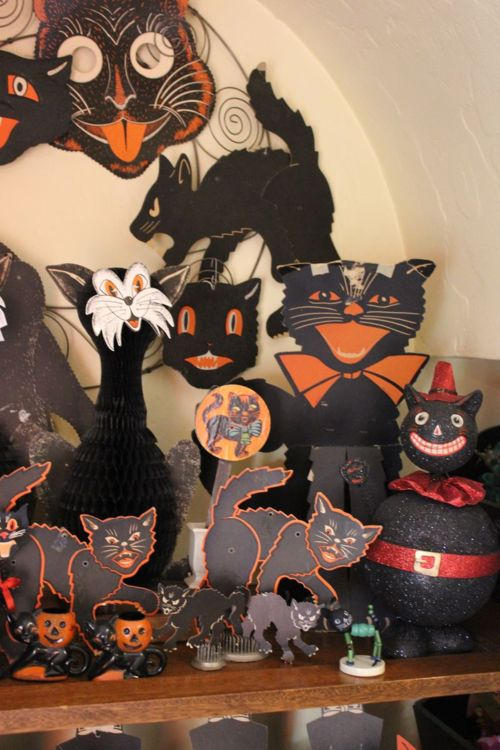 halloween black cat vintage decor and like omg get some yourself some pawtastic adorable cat apparel