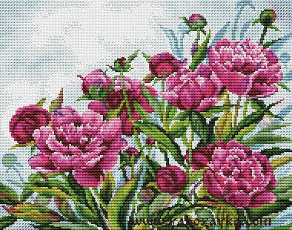 """Вышивка """"Розовые пионы"""" крестиком. Схема вышивки цветов"""