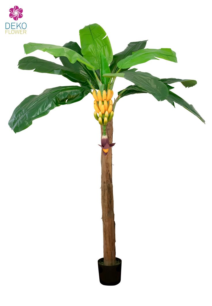 Künstliche Bananenpalme mit Bananenstaude, ca. 210cm