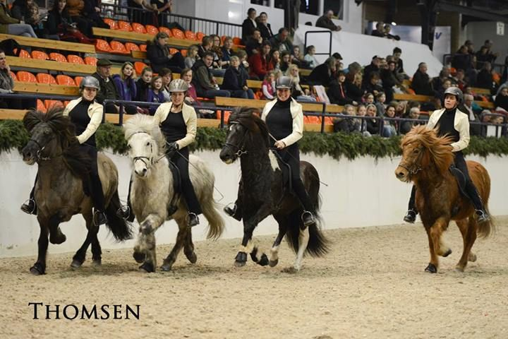 Isibless Wintercup 2014 Quadrille, Thomsen at Holstenhallen.