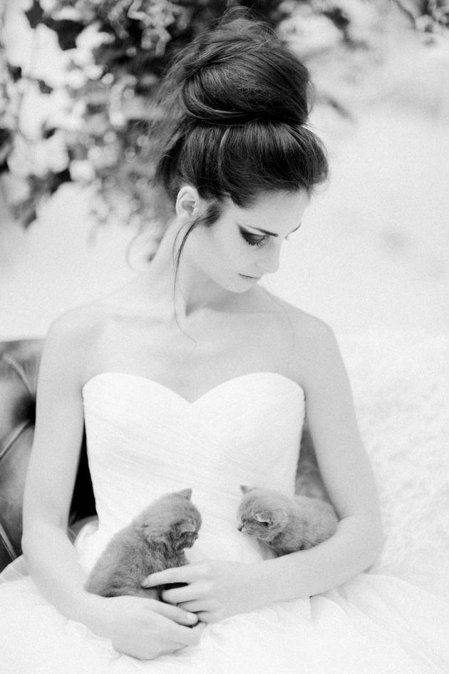 81 best Pets at Weddings images on Pinterest Bridal musings