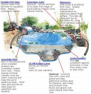 Build your own garden waterfall water pond and water for Build your own waterfall pond